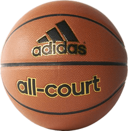 Bild von All-Court Basketball